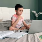 Advantages And Disadvantages Of Online School